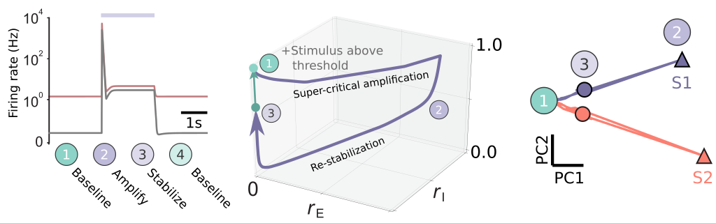 Nonlinear transient amplification in recurrent neural networks with short-term plasticity